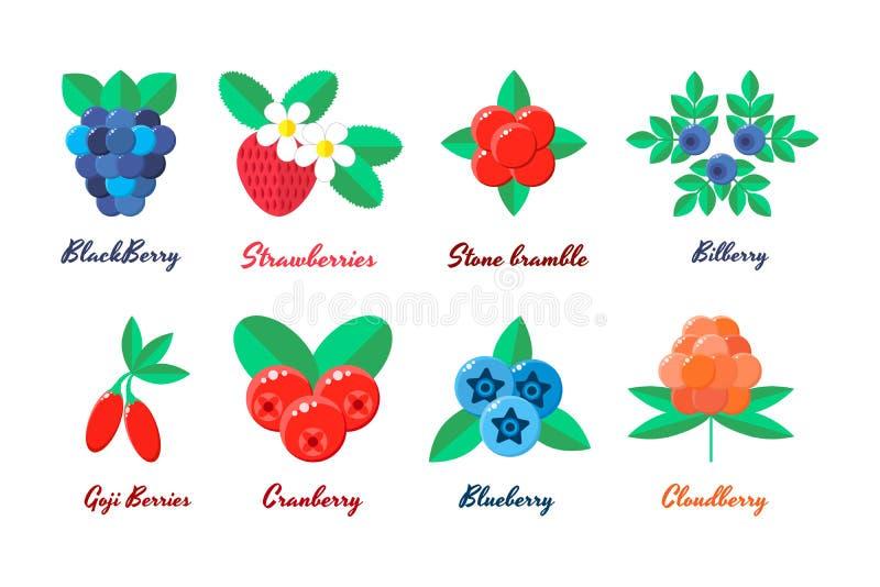 Vector illustratie vastgestelde bessen Aardbeien, bosbessen royalty-vrije illustratie