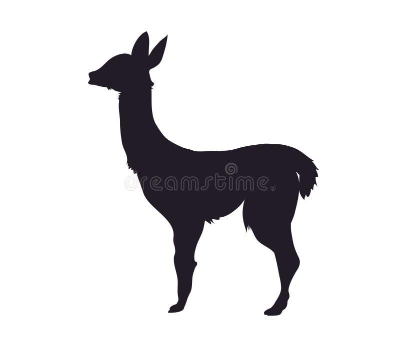 vector illustration of alpaca standing, drawing silhouette vector illustration
