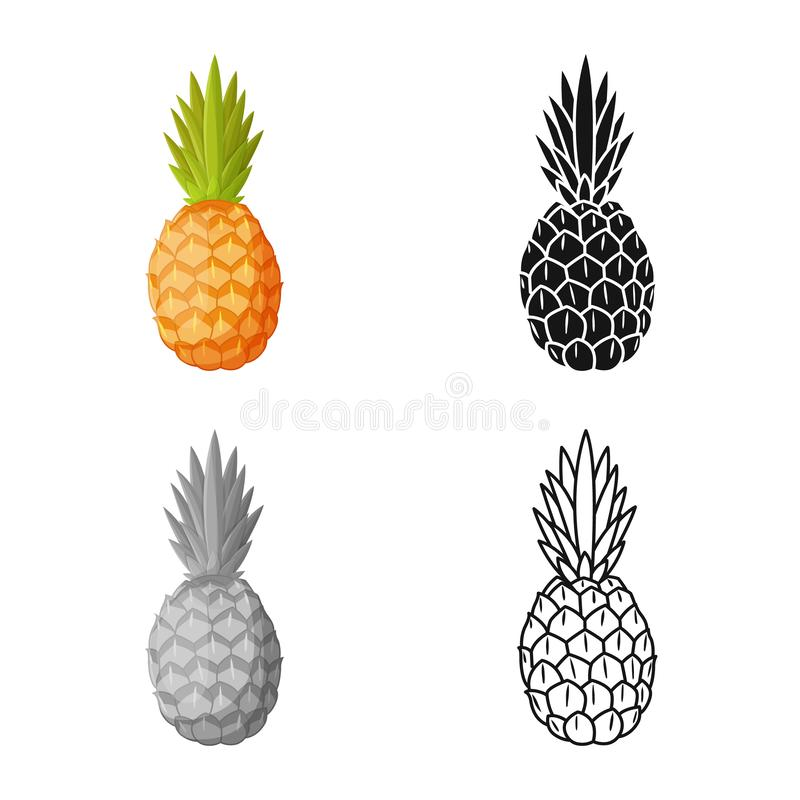 Vector design of ananas and vitamin symbol. Graphic of ananas and tropical vector icon for stock. Vector illustration of ananas and vitamin sign. Web element of royalty free illustration