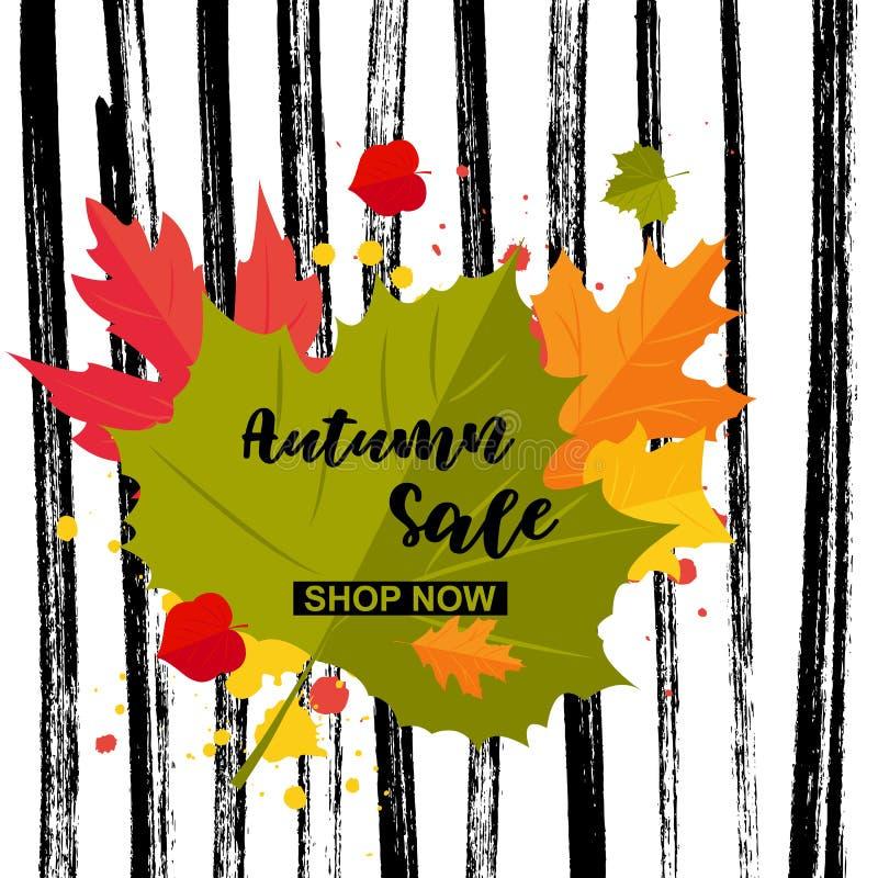 Autumn offer shop now words stock illustration