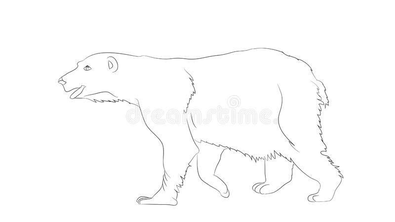 Vector illustration of a bear that stands, vector stock illustration