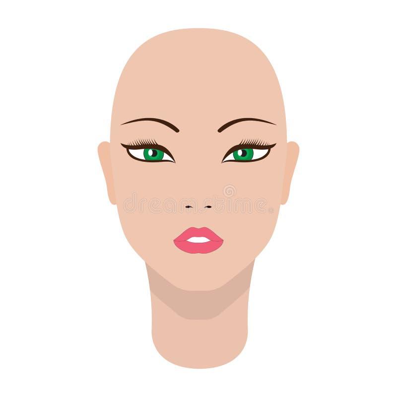 Vector illustration of a beautiful dummy girl head stock illustration
