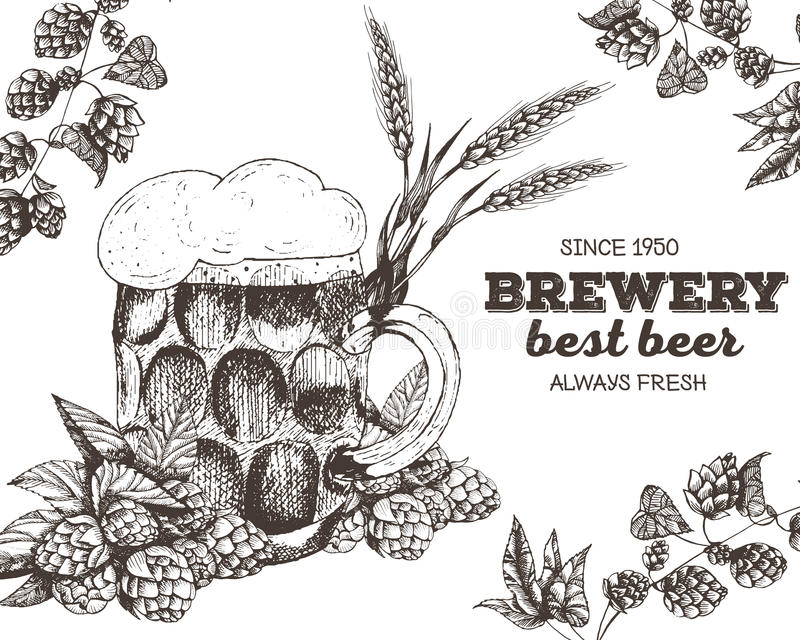 Vector illustration of beer. Raw material for brewing: branch hops and glass. Pub menu set. vector illustration