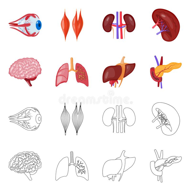 Vector illustration of biology and scientific logo. Collection of biology and laboratory vector icon for stock. Isolated object of biology and scientific icon stock illustration