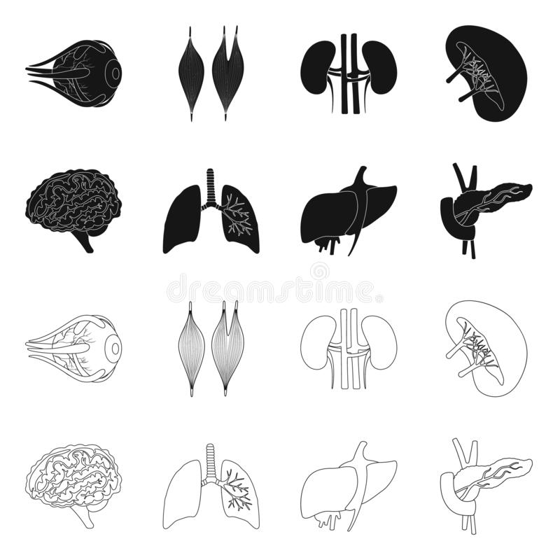 Vector illustration of biology and scientific symbol. Collection of biology and laboratory vector icon for stock. Isolated object of biology and scientific sign vector illustration