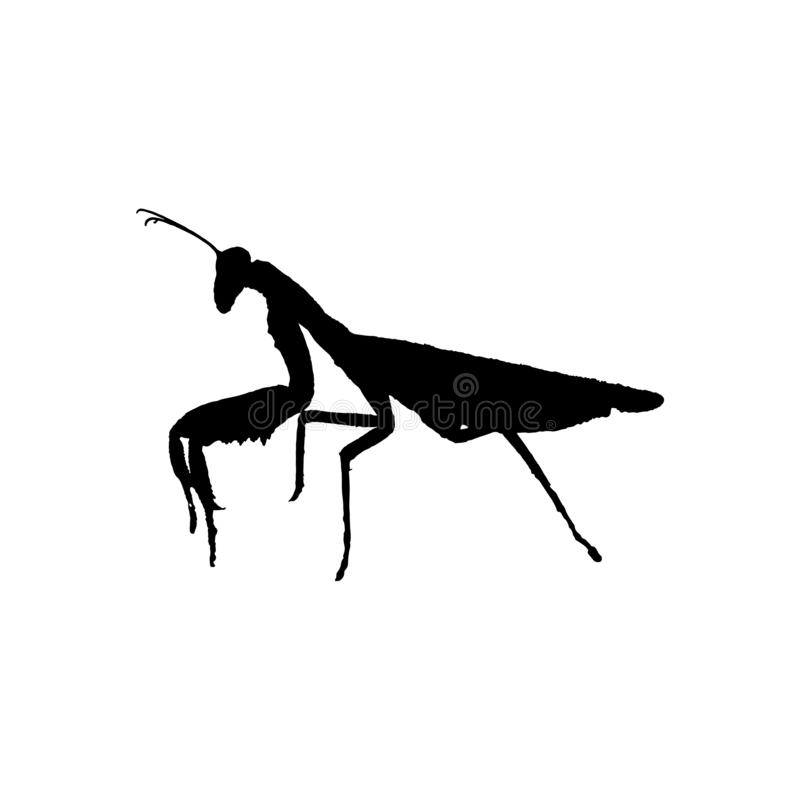 Vector illustration of a mantis. Vector illustration black silhouette icon sign symbol of a mantis isolated on white background stock illustration