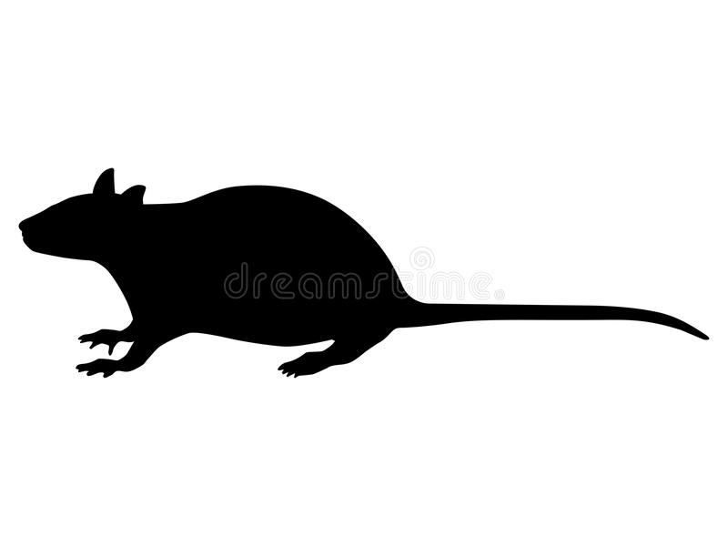 Vector illustration of a black silhouette rat royalty free illustration