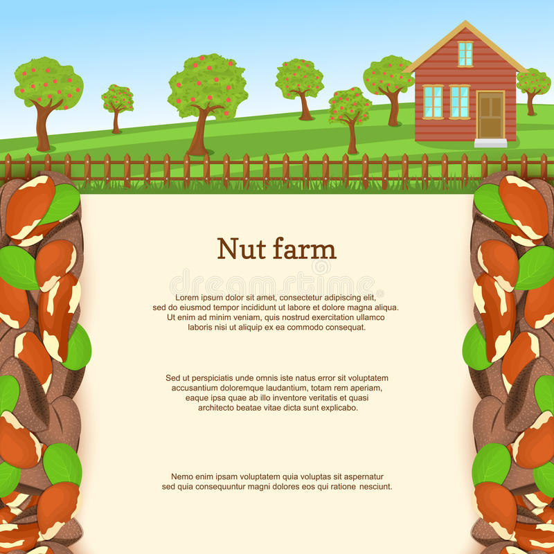 Vector illustration of a brazilian nut farm. Brazilnut border. House, fence, fruit, trees, background with paper texture vector illustration