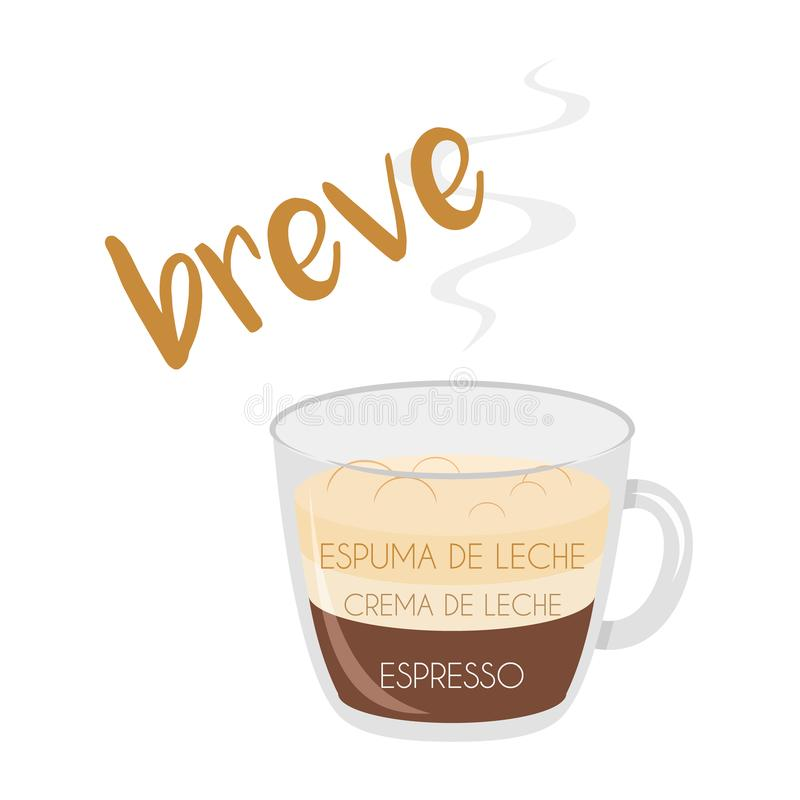 Breve coffee cup icon with its preparation and proportions and names in spanish. Vector illustration of a Breve coffee cup icon with its preparation and stock illustration