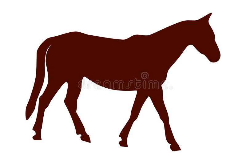 Vector illustration of brown horse royalty free stock photography