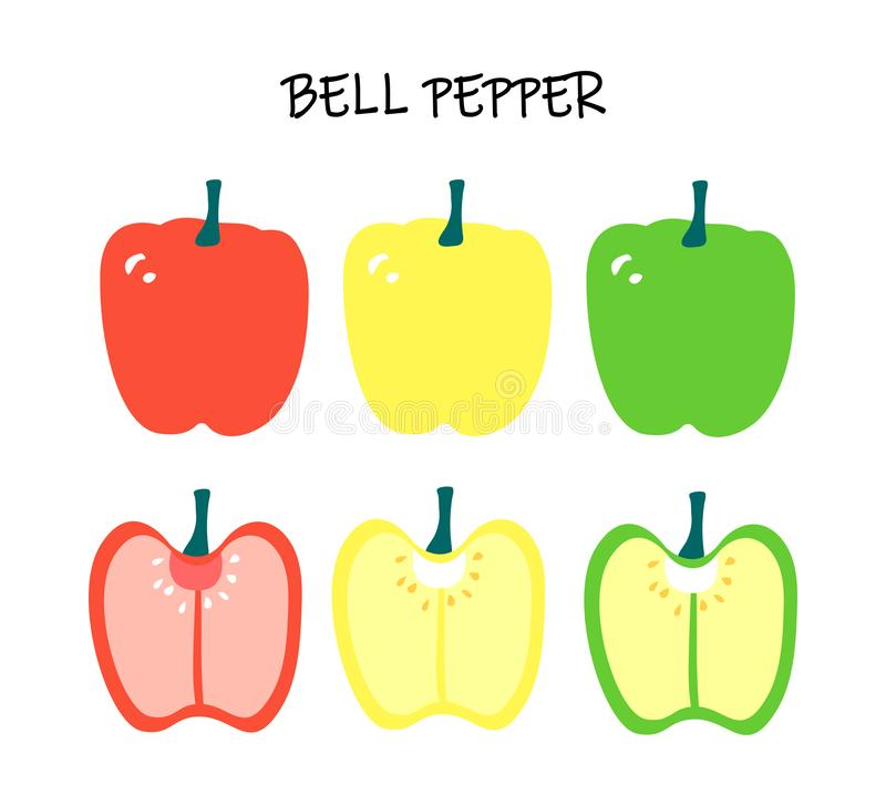 Vector illustration of capsicum - red, yellow and green bell pepper. Modern flat design. royalty free illustration