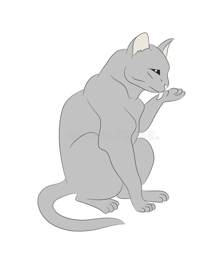 Vector illustration of a cat that licks its paw, drawing color royalty free illustration