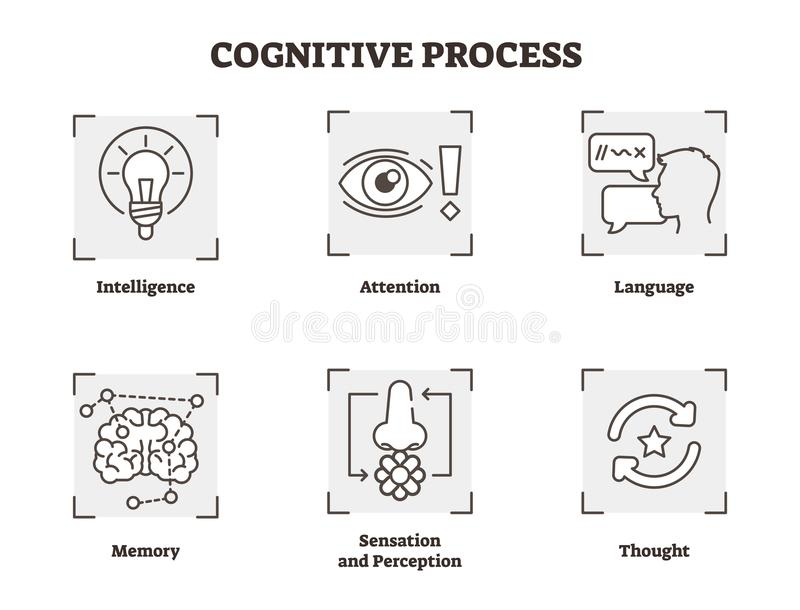 Vector illustration set of cognitive process. Scheme with , attention, and perception types. Psychology basics icon collection. royalty free illustration