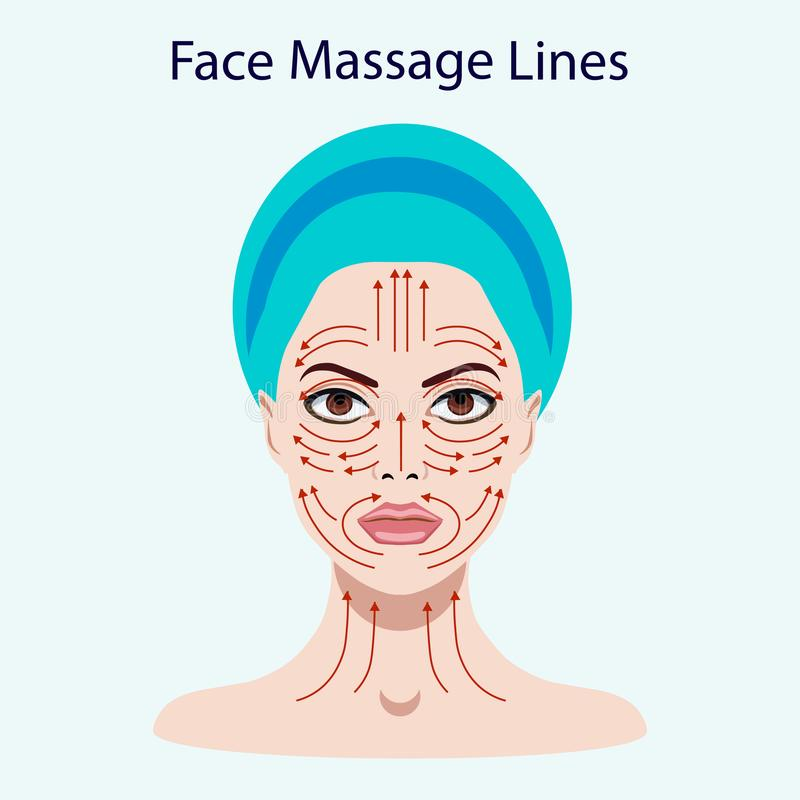 Vector illustration coloured set of face massage instructions isolated on the white royalty free illustration