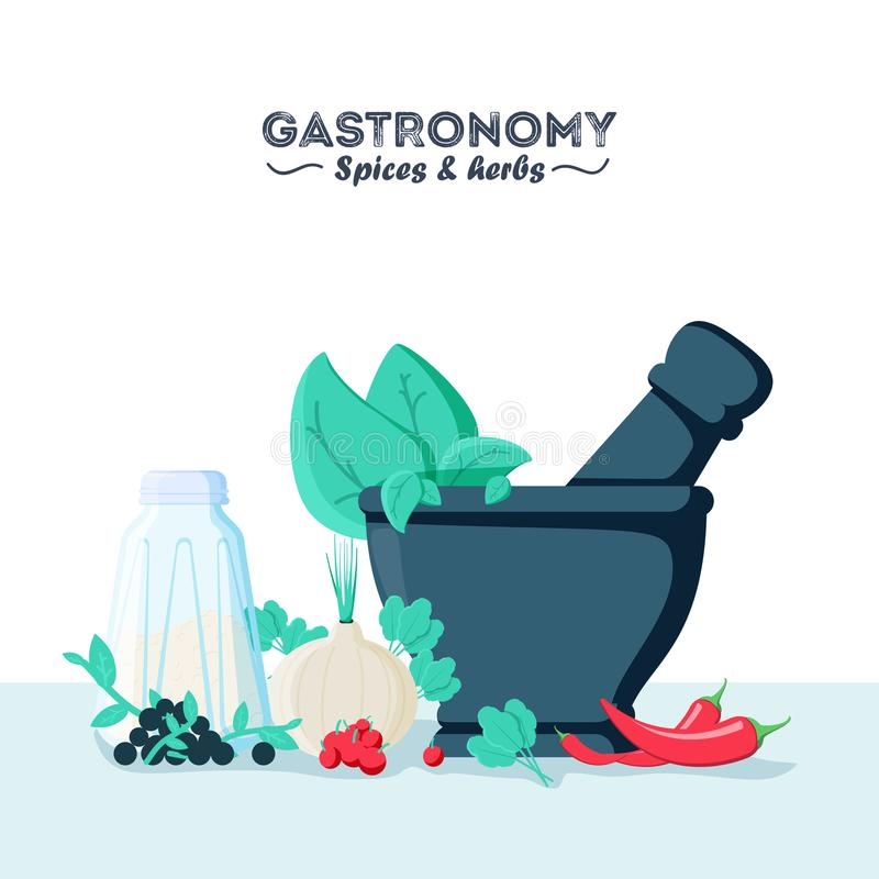 Vector illustration of culinary spices and herbs with mortar and pestle. Flat style. royalty free illustration