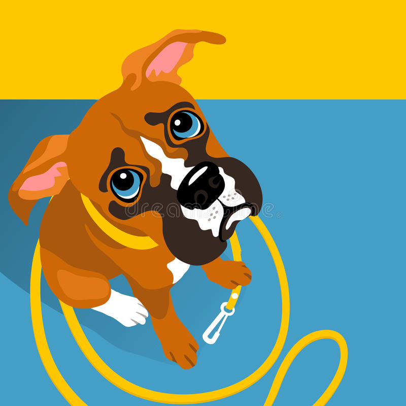 Vector illustration of cute Boxer puppy with leash vector illustration