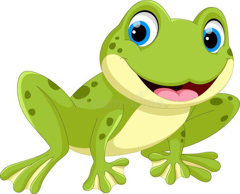 Vector illustration of cute frog cartoon. On white background royalty free illustration
