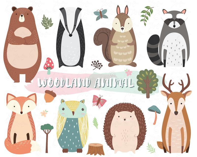 Cute Woodland Animal Collection Set vector illustration