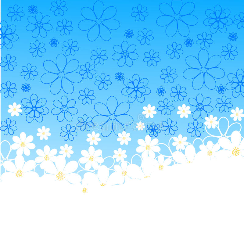 vector Illustration of daisies on blue background stock photos