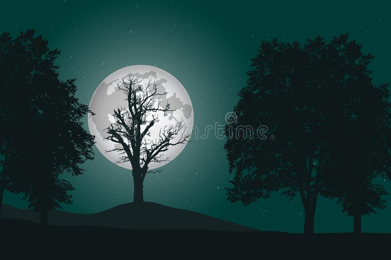 Vector illustration of a deep deciduous forest under a night sky vector illustration