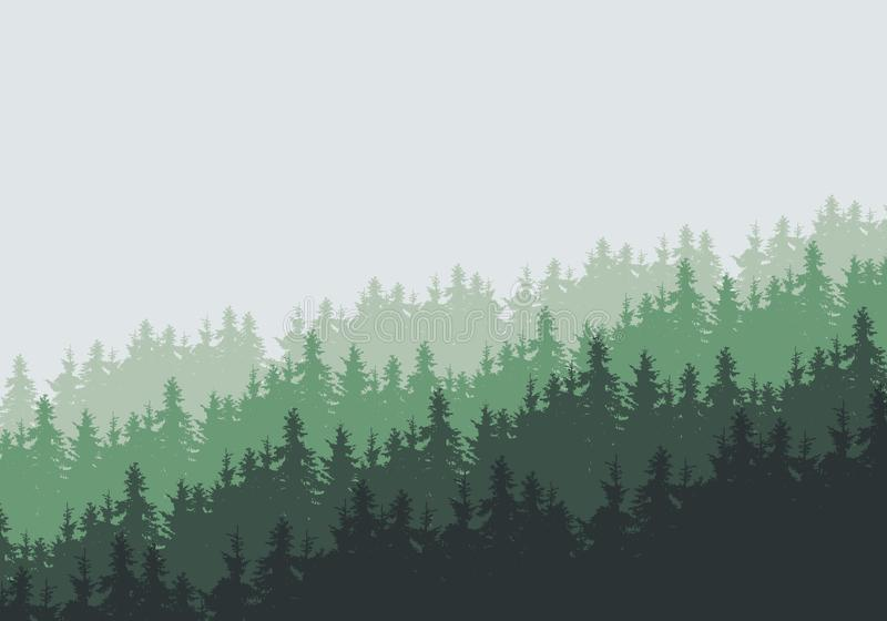 Vector illustration of a dense coniferous forest on a hill under vector illustration