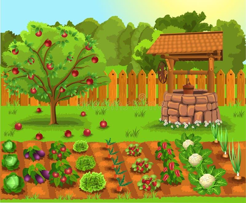 Vector Illustration des Gartens mit Apfelbaum, alter Brunnen und Gemüse und Früchte stock abbildung