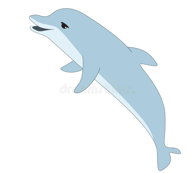 Vector illustration of dolphin on white background