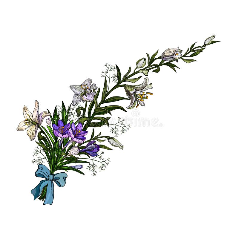 Vector illustration of easter floral bunch oflilies and crocuses with bow in vintage style isolated on white background. royalty free illustration