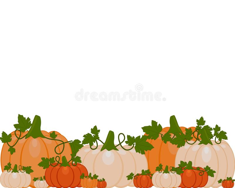Vector Illustration eines Hintergrundes der orange und weißen Kürbise vektor abbildung