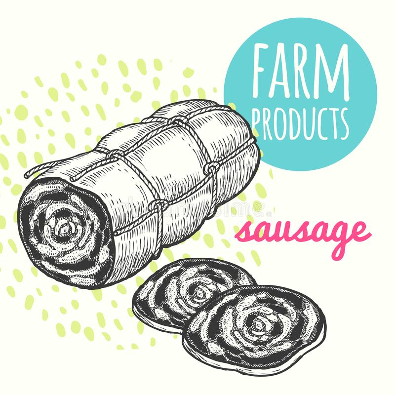 Farmers sausage product. Vector illustration of farmers sausage product. Style hand-drawing, sketch. Farm product isolated on white background. Modern design for stock illustration