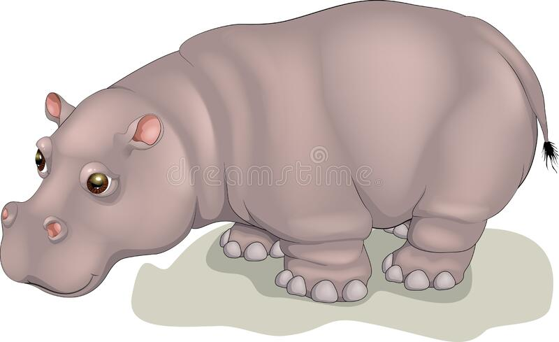 Vector illustration fat hippo Behemoth In cartoon style. Vector illustration fat hippo. Behemoth In cartoon style. River-horse clipart isolated on white royalty free illustration