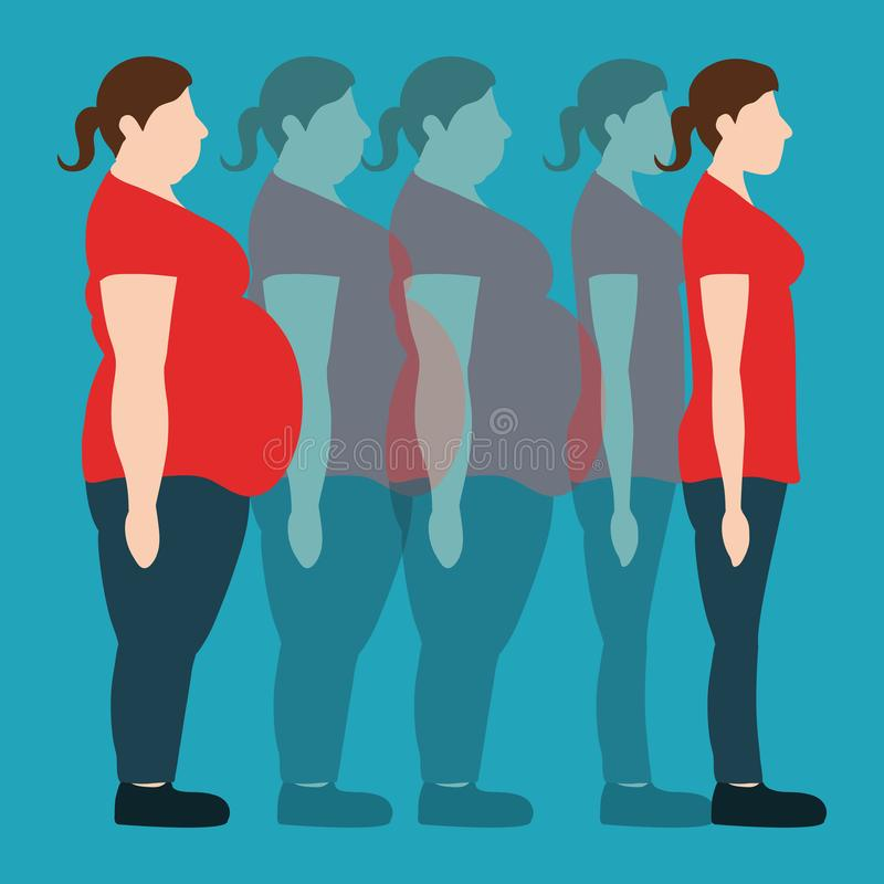 Vector illustration. Figures of women thick and thin. Figures of women thick and thin. weight loss concept. Vector illustration royalty free illustration