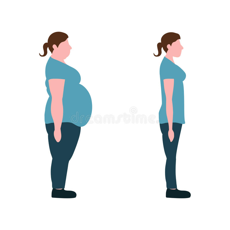 Vector illustration. Figures of women thick and thin. Figures of women thick and thin. weight loss concept. Vector illustration stock illustration
