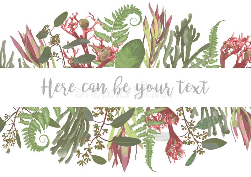 Vector illustration of a frame with flowers. Brunia, fern, eucalyptus, leucadendron, gaultheria, salal, jatropha.Pattern for. Wedding invitations, greeting royalty free illustration
