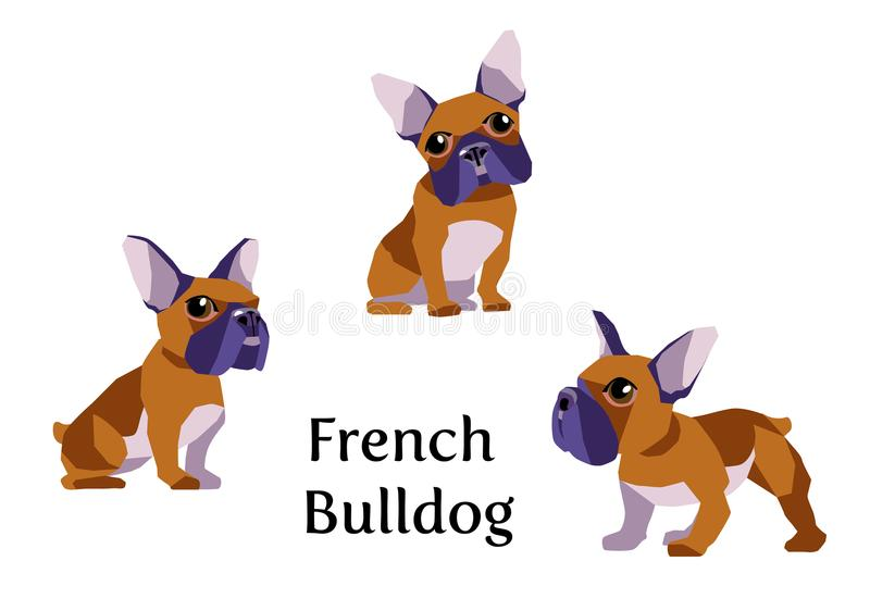French Bulldog in different poses vector illustration
