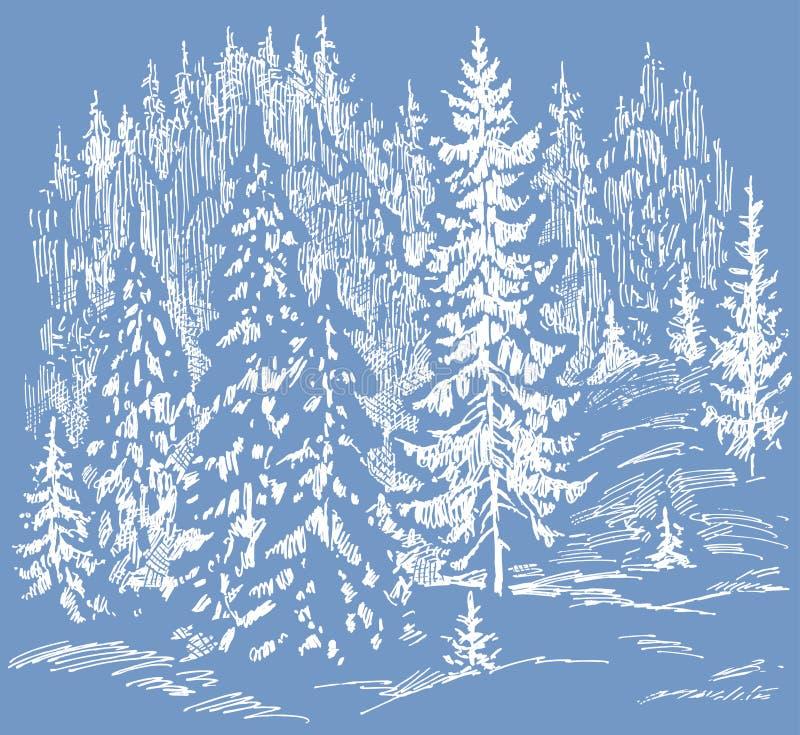 Vector illustration of frozen fir forest in december royalty free illustration