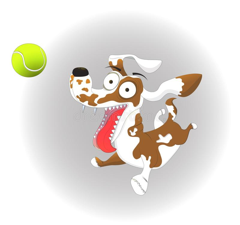Vector illustration, funny dog and tennis ball, on a white background royalty free illustration