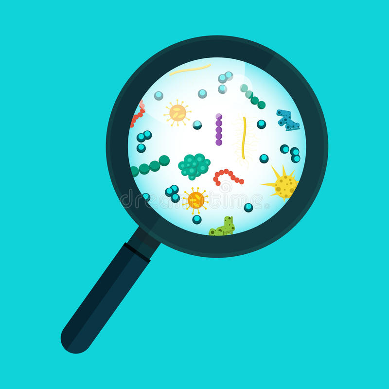 Vector illustration. Germs under the microscope. royalty free illustration