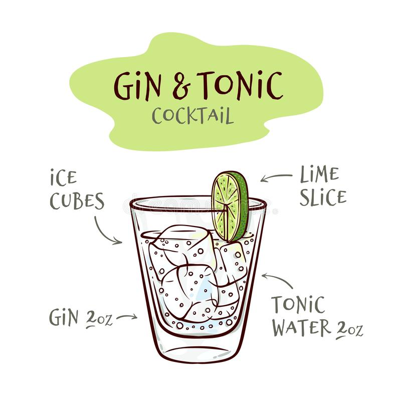 Vector illustration of gin and tonic cocktail recipe with proportions of ingredients. Vector illustration of gin and tonic cocktail recipe with proportions of vector illustration