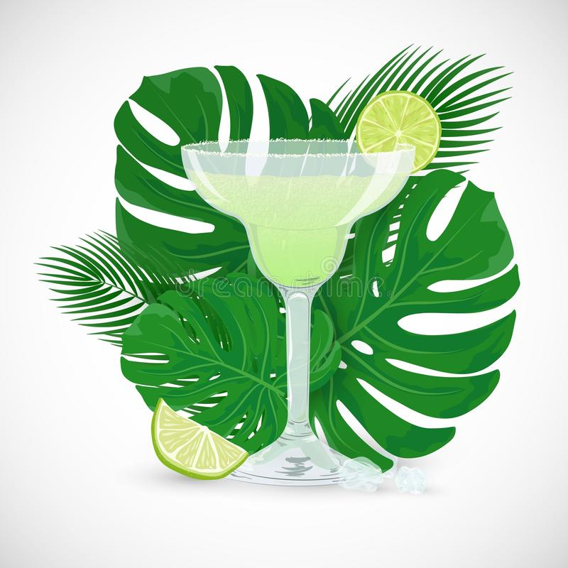 Vector glass of Margarita cocktail with tropic leaves. Vector illustration of glass of classic Margarita cocktail with tropic leaves on white background. Summer vector illustration