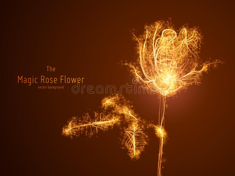 Vector illustration of glowing rose flower constructed with branching lines and glowing point trails. The concept of vector illustration