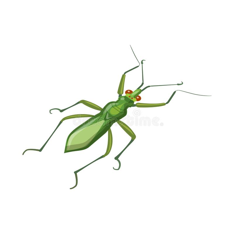 Grasshopper and Ant stock vector. Illustration of grey ...
