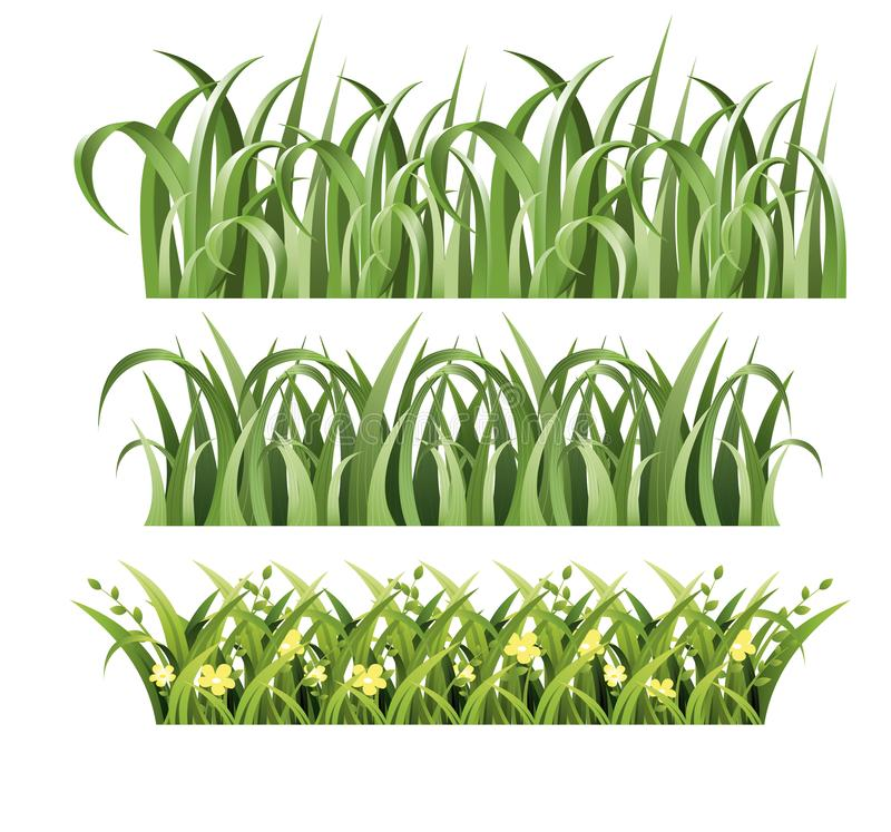 Vector illustration of green grass set on white background. Spring and summer design in cartoon style. vector illustration