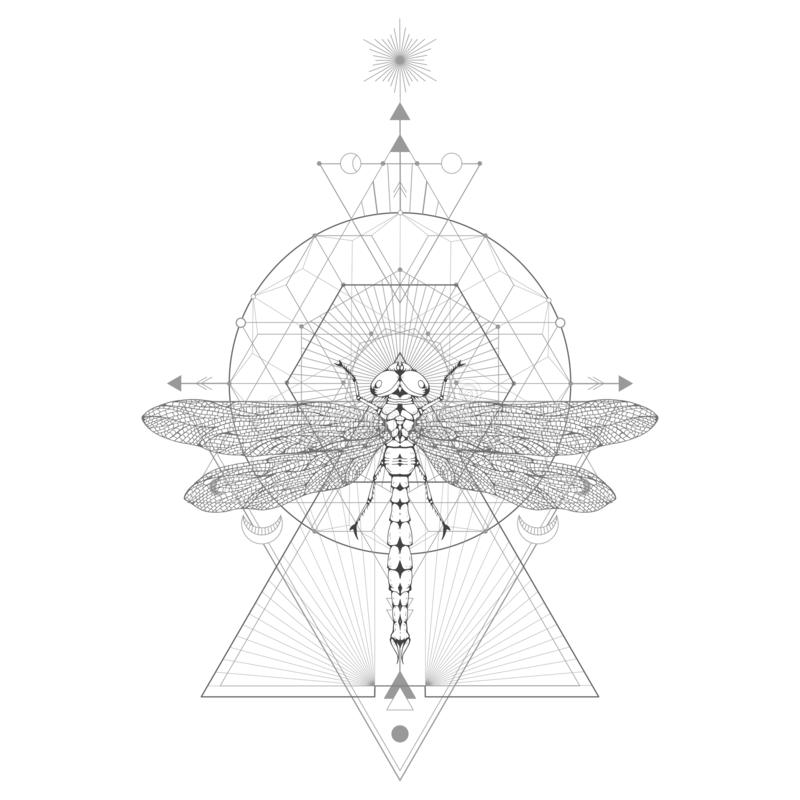 Vector illustration with hand drawn dragonfly and Sacred geometric symbol on white background. Abstract mystic sign. Black linear shape. For you design: tattoo royalty free illustration