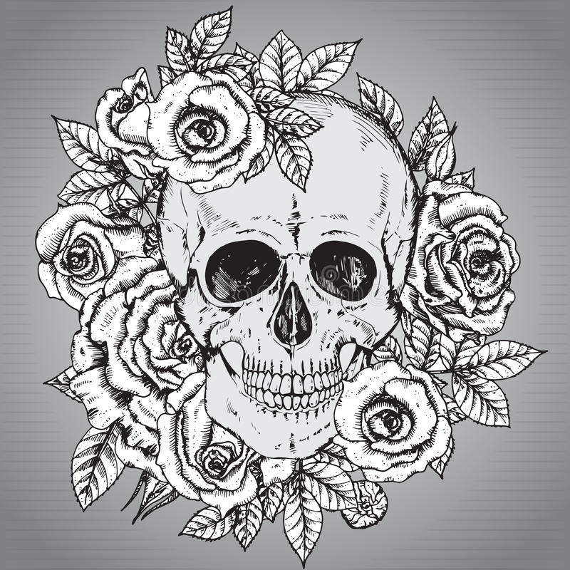 Vector illustration with hand drawn human skull with rose flower royalty free illustration