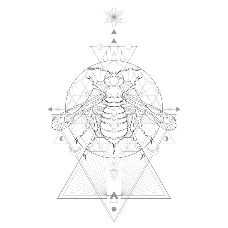 Vector illustration with hand drawn wasp and Sacred geometric symbol on white background. Abstract mystic sign. Black linear shape. For you design: tattoo vector illustration