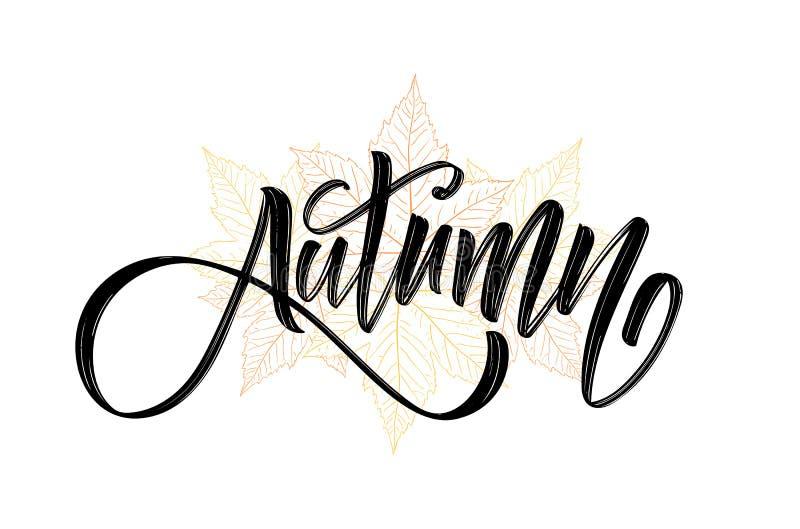 Vector illustration: Handwritten brush lettering composition of Autumn on hand drawn fall leaves background.  stock illustration