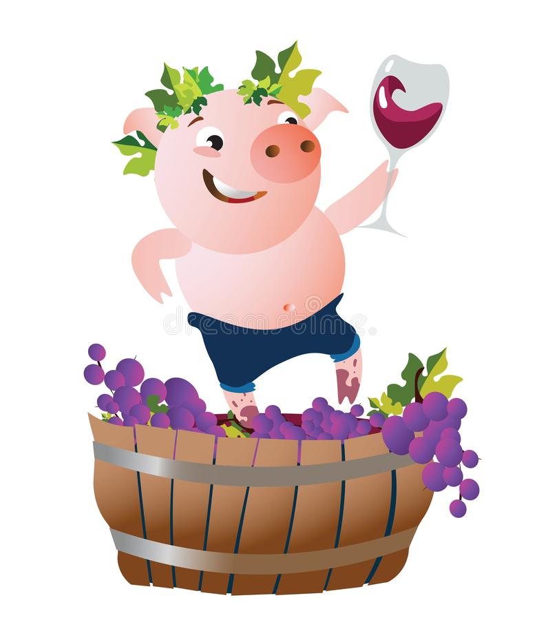 Vector illustration with happy pig winemaker. The happy pig presses down the grapes and drinks wine. Vector illustration. Isolated on transparent background royalty free illustration