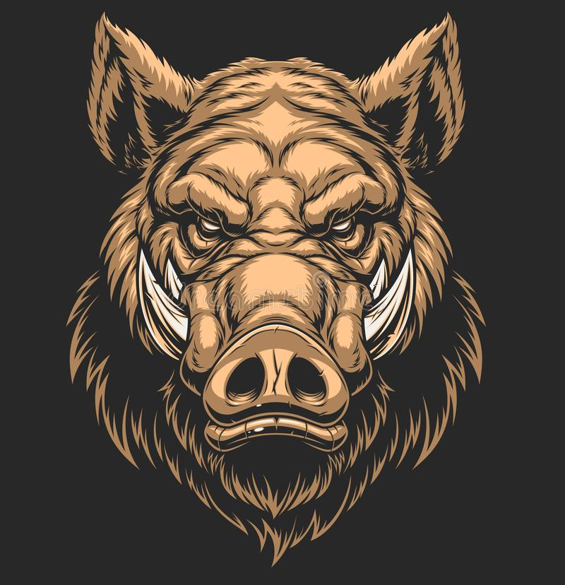 Head ferocious boar. Vector illustration, the head of a ferocious wild boar, on a black background stock illustration