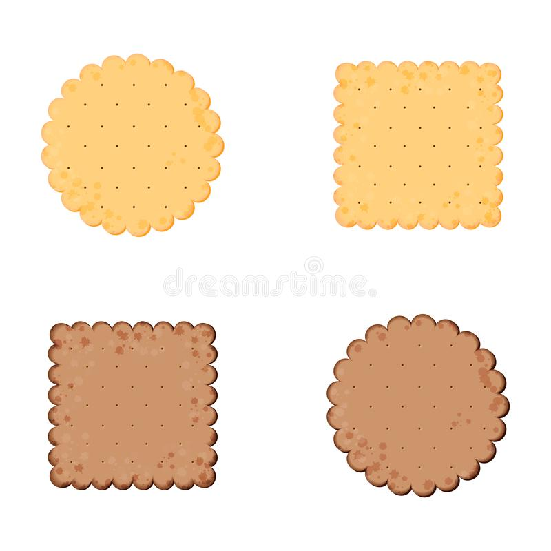 Health cracker. Chocolate cracker.  Isolated cookie: circle, square. Icon in flat style stock illustration